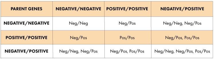 negative positive chart