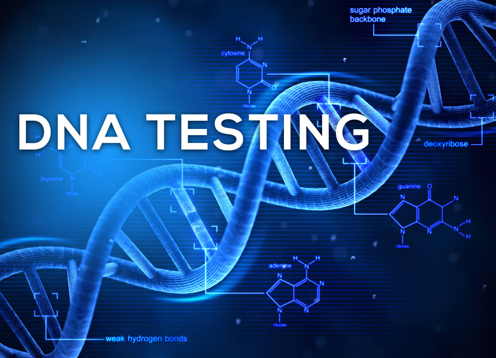 genuine DNA tests